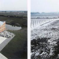 Ai-Weiwei-24