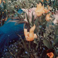 Alice-Lemarin-15