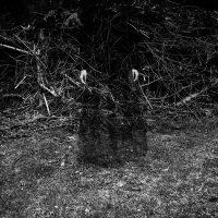 Alicja-Brodowicz-Phatic-Communion-3