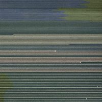 Andreas-Gursky-19
