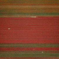 Andreas-Gursky-25