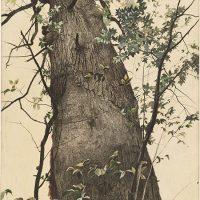 Andrew-Wyeth-30