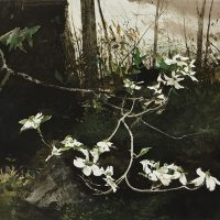 Andrew-Wyeth-35