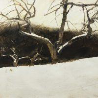 Andrew-Wyeth-37