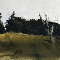 Andrew-Wyeth-53