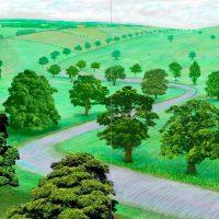 David-Hockney41