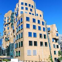 Frank-Gehry5