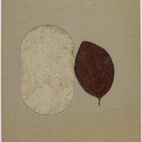 Joseph-Beuys-118
