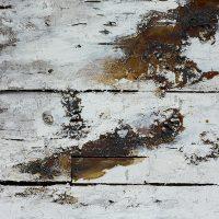 Joseph-Beuys-42