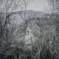 Luca-Sola-earthquake-26
