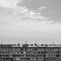 Tatevik-Vardanyan-01
