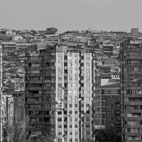 Tatevik-Vardanyan-02