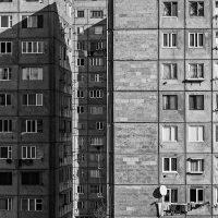 Tatevik-Vardanyan-14