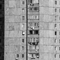 Tatevik-Vardanyan-19