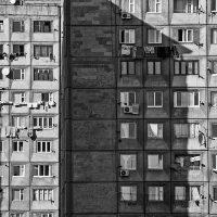 Tatevik-Vardanyan-20